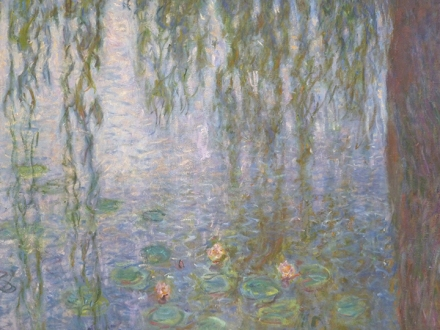 Les Nympheas ~ Monet